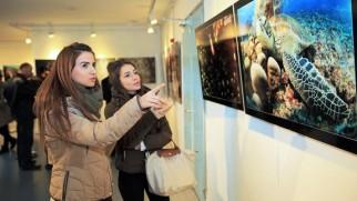 Sualtının gizemleri fotoğraf sergisi
